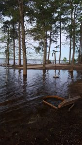 Lake of the Pines