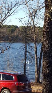 Buckhorn Creek View