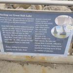 Sailing Information